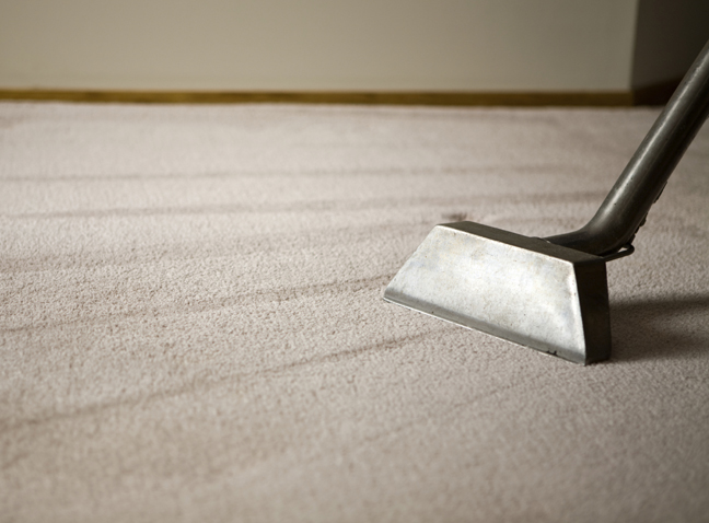 Shag Rug with Carpet Cleaning Equipment