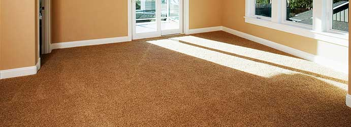 Most Affluent Carpet Cleaners in Town Wantirna