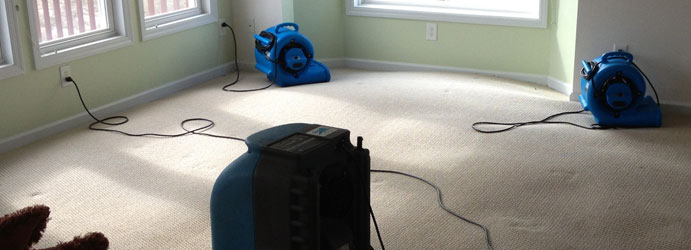 Carpet Sewage Restoration Melbourne
