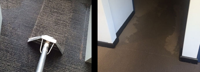 Carpet Water Damage Cleanup Melbourne