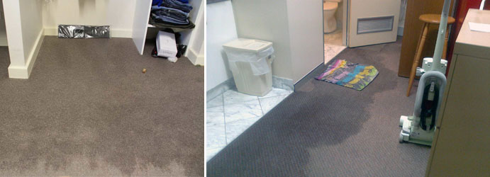Wet Carpet Drying Melbourne