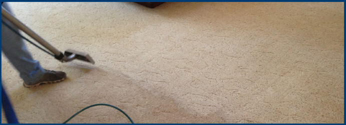 Carpet Sanitisation Service