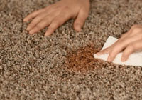 Remove Old Set-in Stain From Carpet Melbourne
