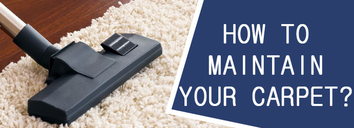 How to Maintain Your Carpet?