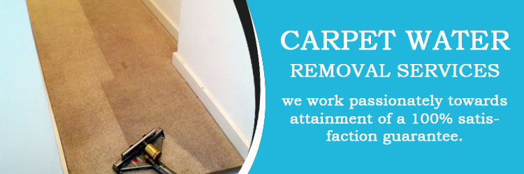 Carpet Water Removal services