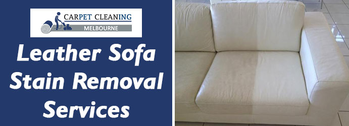 Leather Sofa Stain Removal