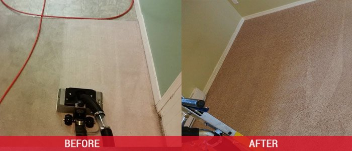 Carpet Cleaning Before and After Seville