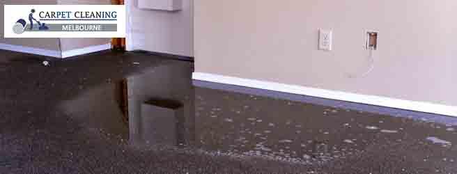 Carpet Water Restoration Melbourne