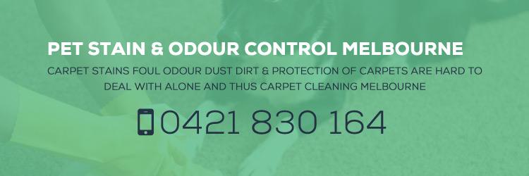 Pet Stain & Odour Control Melbourne