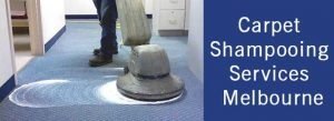 Carpet shampooing Services Melbourne