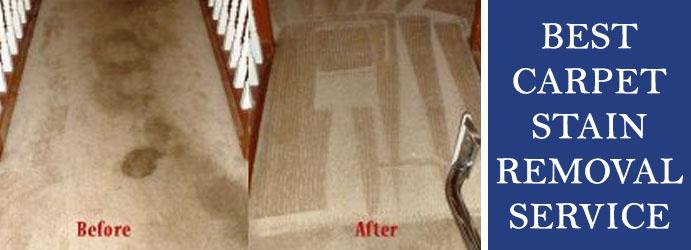 Carpet Stain Removal Service Melbourne