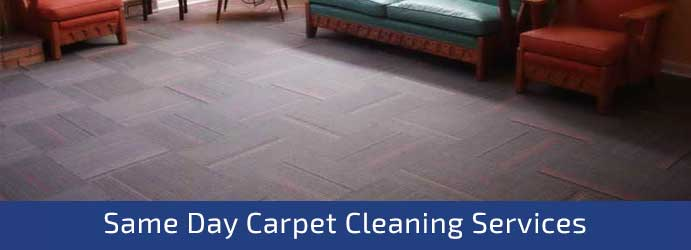 Same Day Carpet Cleaning Caveat