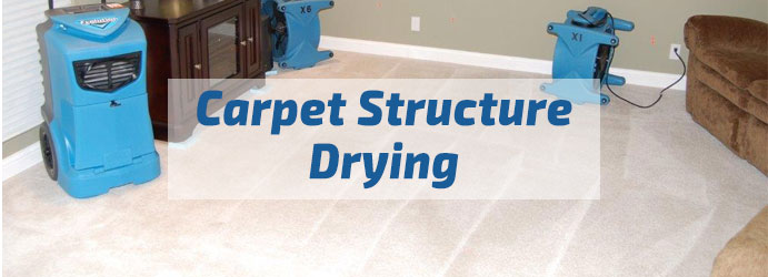Carpet Structure Drying Melbourne