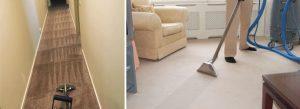 Carpet Sanitising Perth