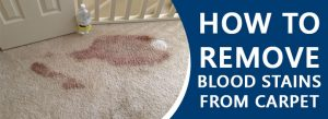 Remove Blood Stains From Carpet Melbourne