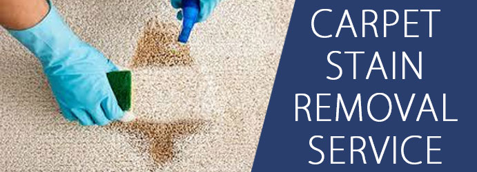 Carpet Stain Removal Service Mitchell
