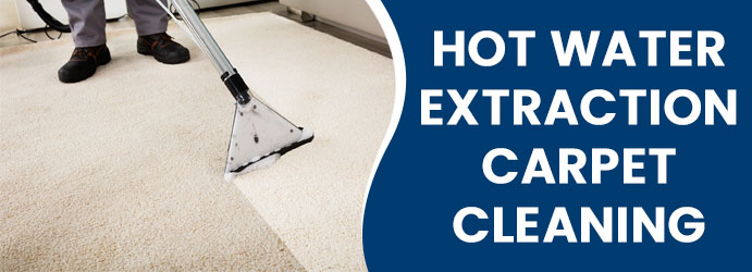Hot Water Extraction for Carpet Cleaning