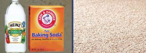 Carpet Cleaning Service With Baking Soda and Vinegar