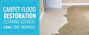 Carpet Flood Water Damage Restoration Melbourne