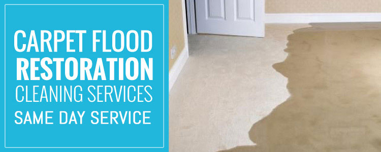 Carpet Flood Water Damage Restoration Indented Head