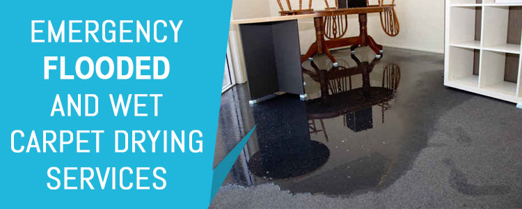 Wet Carpet Drying Services Indented Head