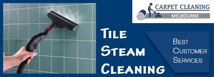 Tile Steam Cleaning Burnside