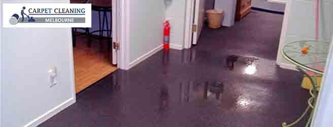 Professional Carpet Water Dame Restoration Service Melbourne