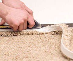 Carpet shampooing Carboor
