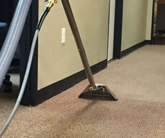 Carpet sanitizing Carboor