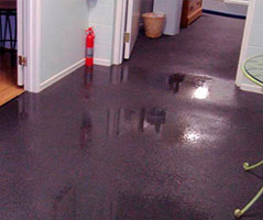 Carpet water damage restoration The Heart