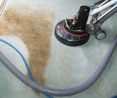 Same day carpet cleaning Bealiba