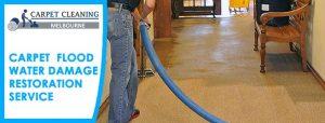 Carpet Flood Water Damage Restoration Service Adelaide