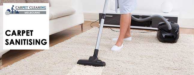 Carpet Sanitising Service The Patch
