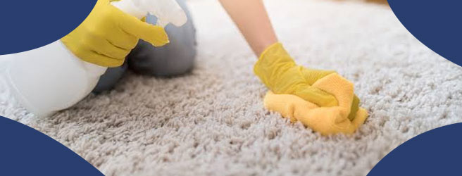 How to Remove Odours from The Carpet?