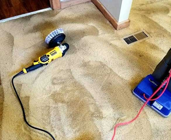 Carpet Cleaning Services The Heart