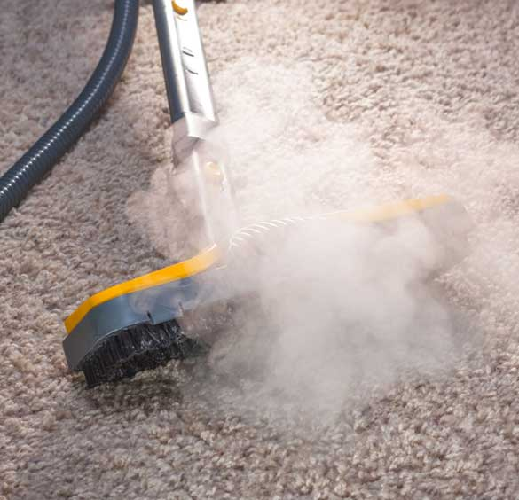 Carpet Steam Cleaning The Heart