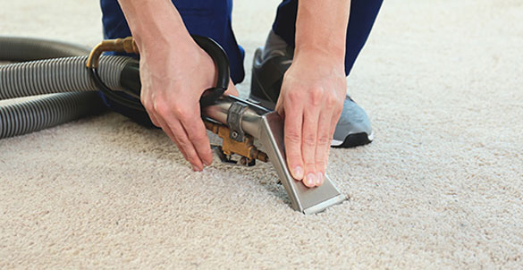 Residential Carpet Cleaning The Heart