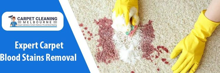 How to Extract Blood Stains From The Carpet