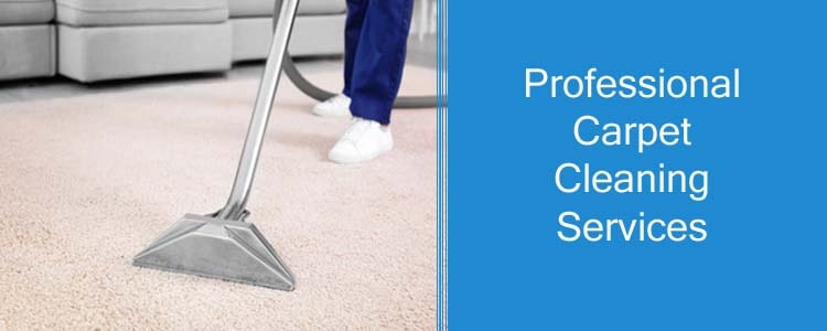 Professionals Carpet Cleaning Service